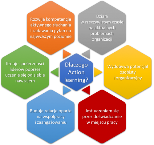 Action_learning